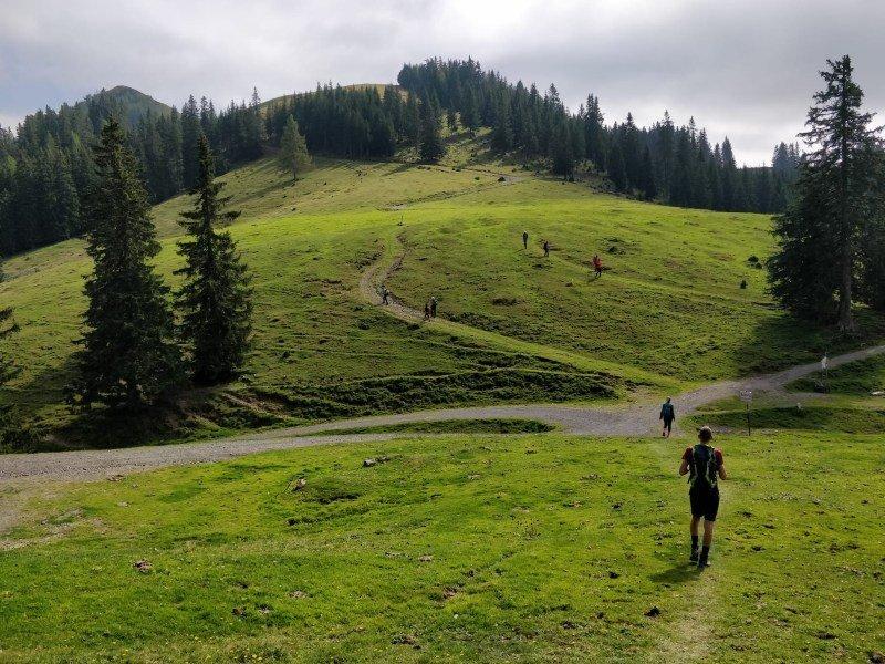 Monte Osternig escursioni friuli trekking per bambini in montagna