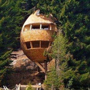 malga priu casa su albero ugovizza trekking per bambini escursioni friuli