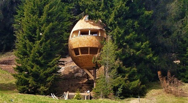 malga priu casa sull'albero a ugovizza