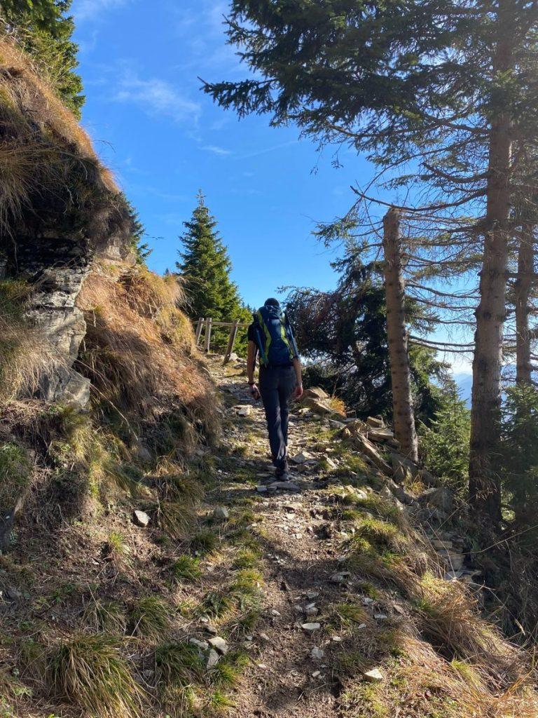 Malghe di Sauris escursioni in friuli
