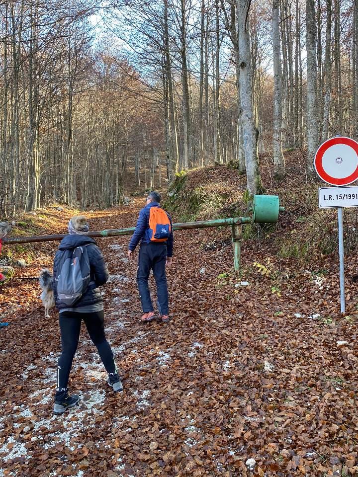 Inizio sentiero Monte Cjastelat
