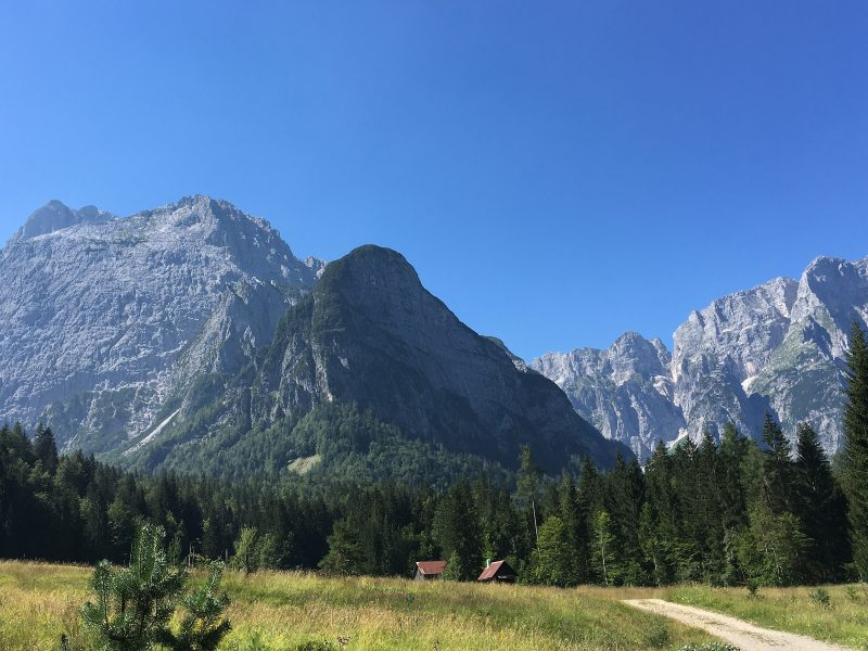 Vista verso il Montasio