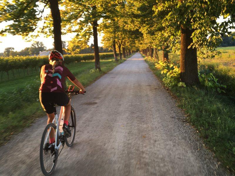 In bicicletta sul viale alberato di Marzinis