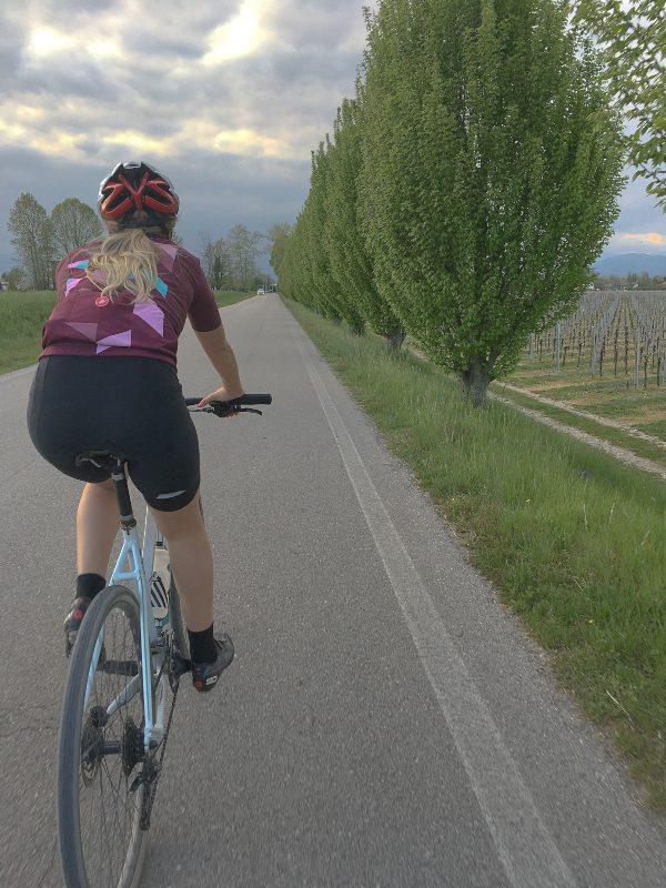Bicicletta su viale alberato