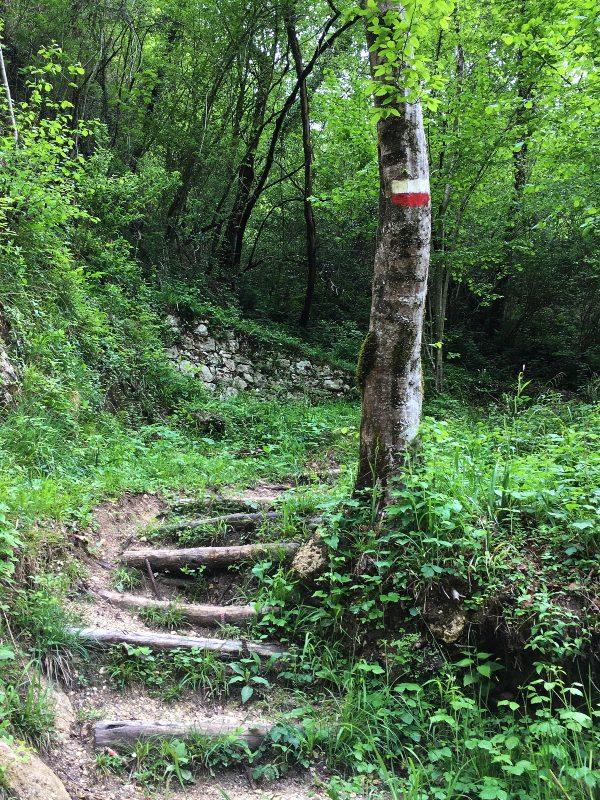 Il sentiero del Castello di Pinzano