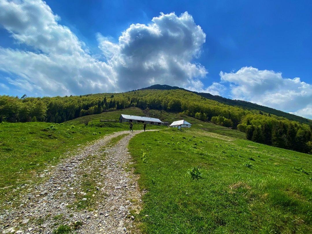 Monte Dauda