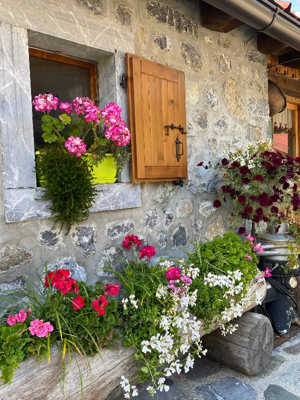 Casera pramosio fiori