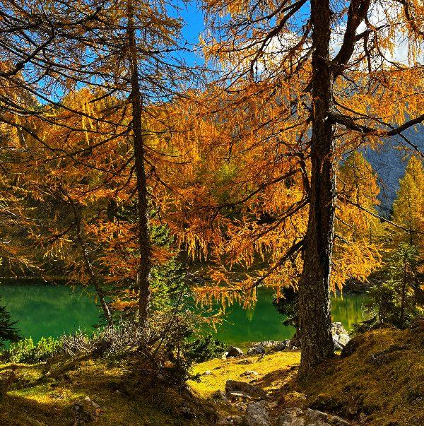 camminate in autunno friuli